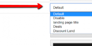How To Create A Custom Optin Page